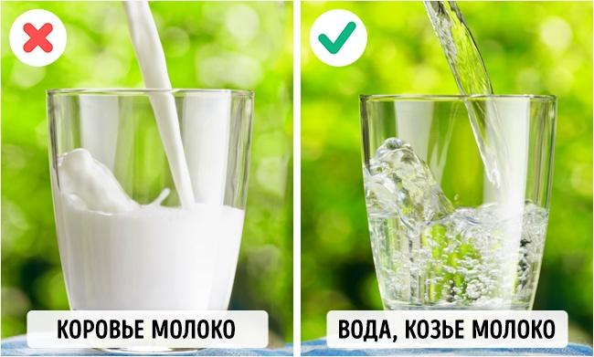 © Efired / Shutterstock     Коровье молоко содержит лактозу, которую очень плохо