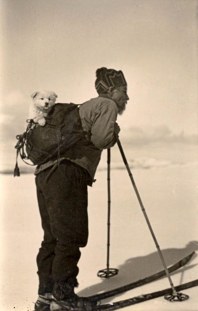 Как звери XIX века с людьми дружили (35 фото)
