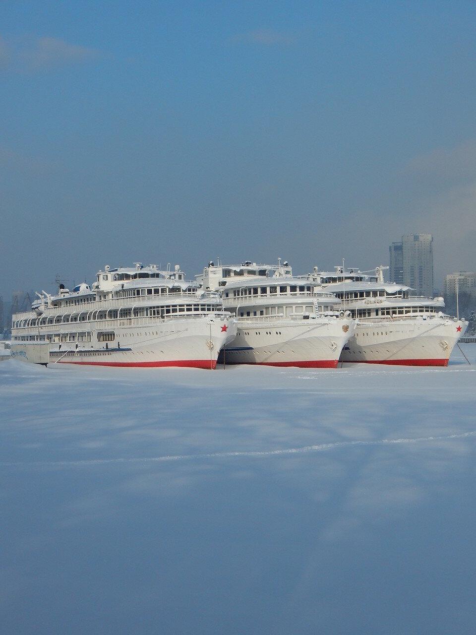 Зимующая речная флотилия...