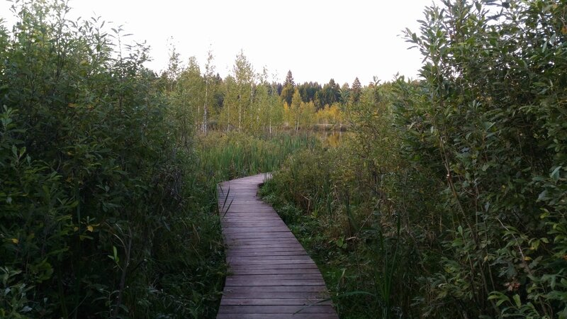 Мостки, Пчелинское озеро