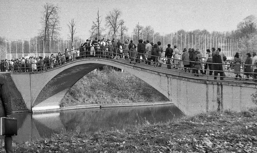 638031 Горбатый мост на Серебряно-Виноградном пруду.jpgА. Ладей 87.jpg