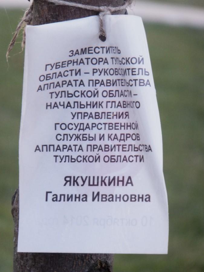 11в.jpg