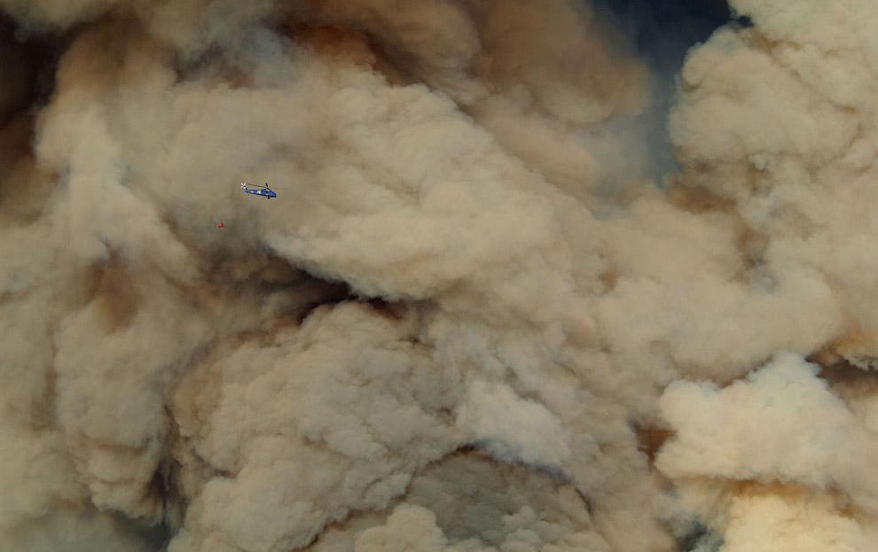 3. Всего естественных пожаров (от молний) составляет около 7 %-8 % от общего количества, то ес