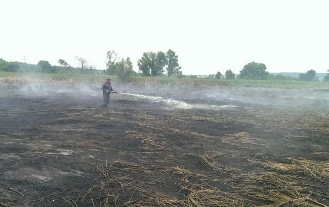 Под Киевом горит около 1,5 гаторфа