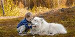 Белый Бим и мальчик Андрюха..