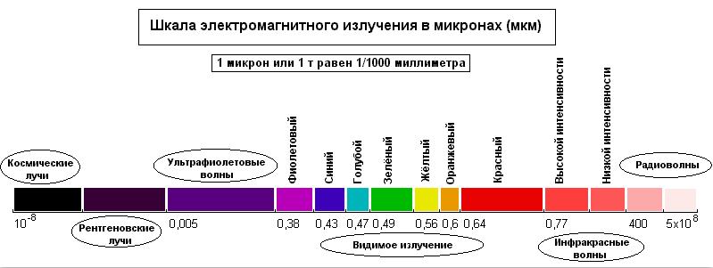 Анатомия цвета