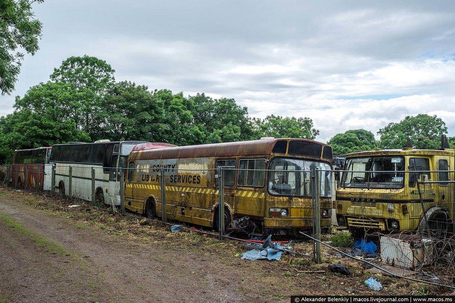 Сюда свозили целые автобусные парки, после того, как те списывали старые машины.