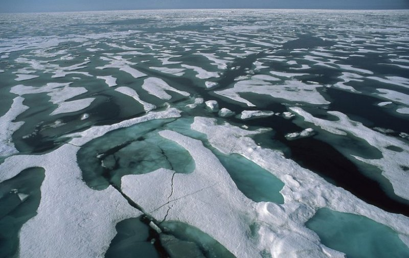 Ученые узнали, почему льды Арктики окрашиваются взеленый цвет