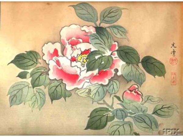 Tsuchiya_Koitsu-No_Series-Floral_print_Flower-00028704-021015-F06.jpg