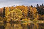 Осенние краски природы