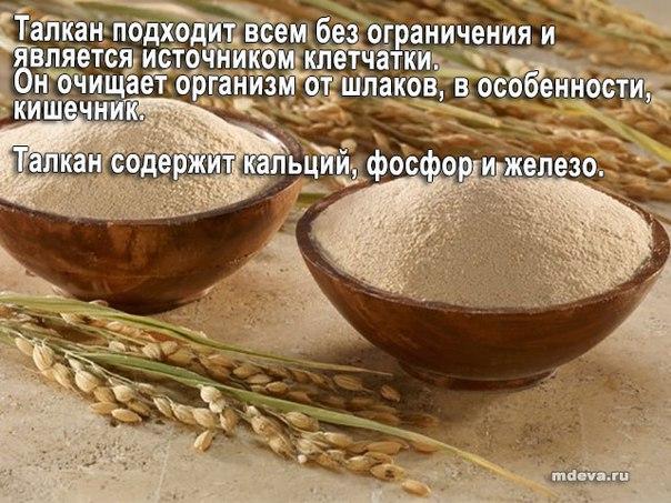 Талкан – пища богов