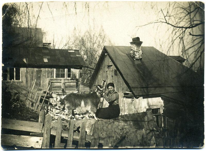 Этюд с козой