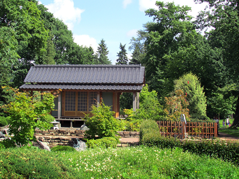 серия Японский сад 5