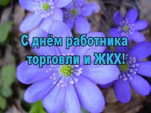 Открытка С Днем работника торговли и ЖКХ! Красивые голубые цветы открытки фото рисунки картинки поздравления