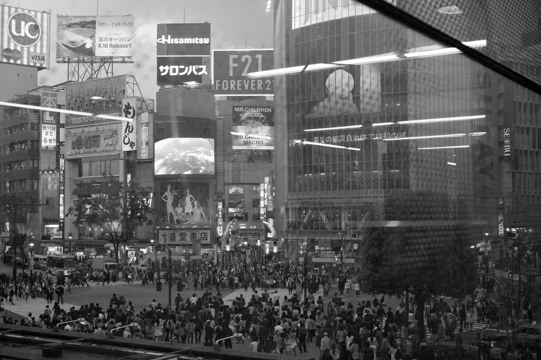алкоголизм алкоголь пьянство среда обитания Япония японцы