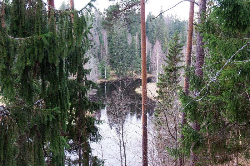 река Оредеж в Белогорка и сиверский