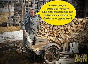 европа газом греется, а сибирь - дровами.jpg