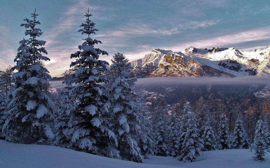 Зимний пейзаж Заставка
