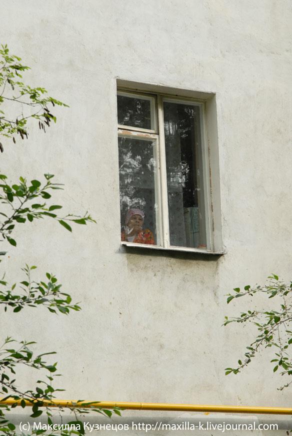 Бабушка в окне