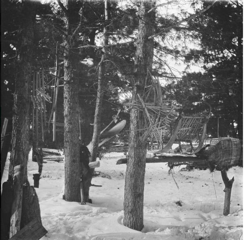 Развешенные для хранения на деревьях вещи остяков