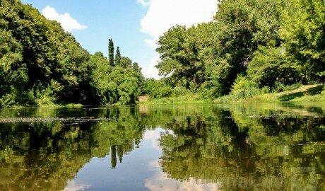 Сегодня в Молдове синоптики прогнозируют слабые дожди