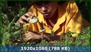 http//img-fotki.yandex.ru/get/890/170664692.41/0_1265_f6959218_orig.png