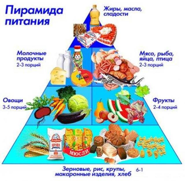 Пирамида питания. Четыре ступени