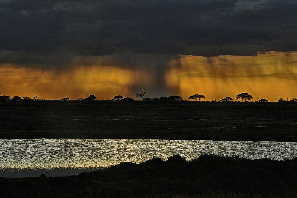 В национальном парке обитает более 400 видов птиц и 80 видов млекопитающих.