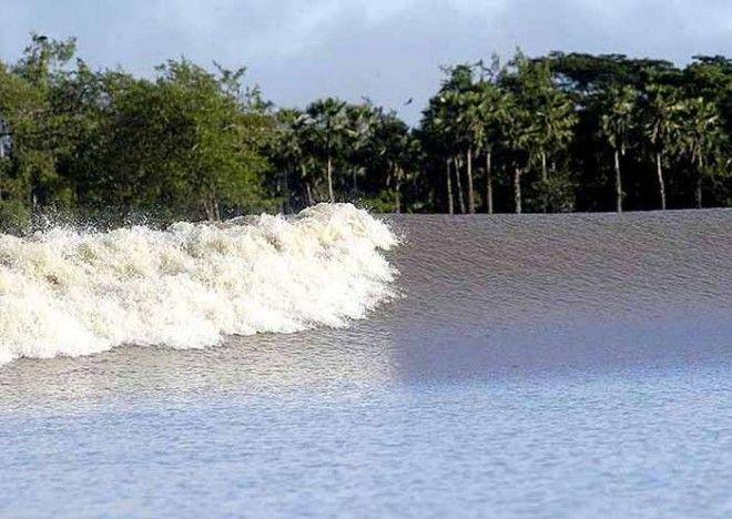 Аномальная волна. Бор — аномально высокая приливная волна, которая иногда возникает в устье ре