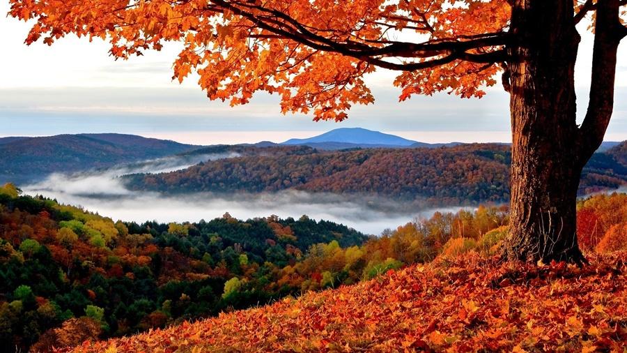Отпуск осенью: отдохнуть на все сто! Красивые фотографии осеннего отпуска