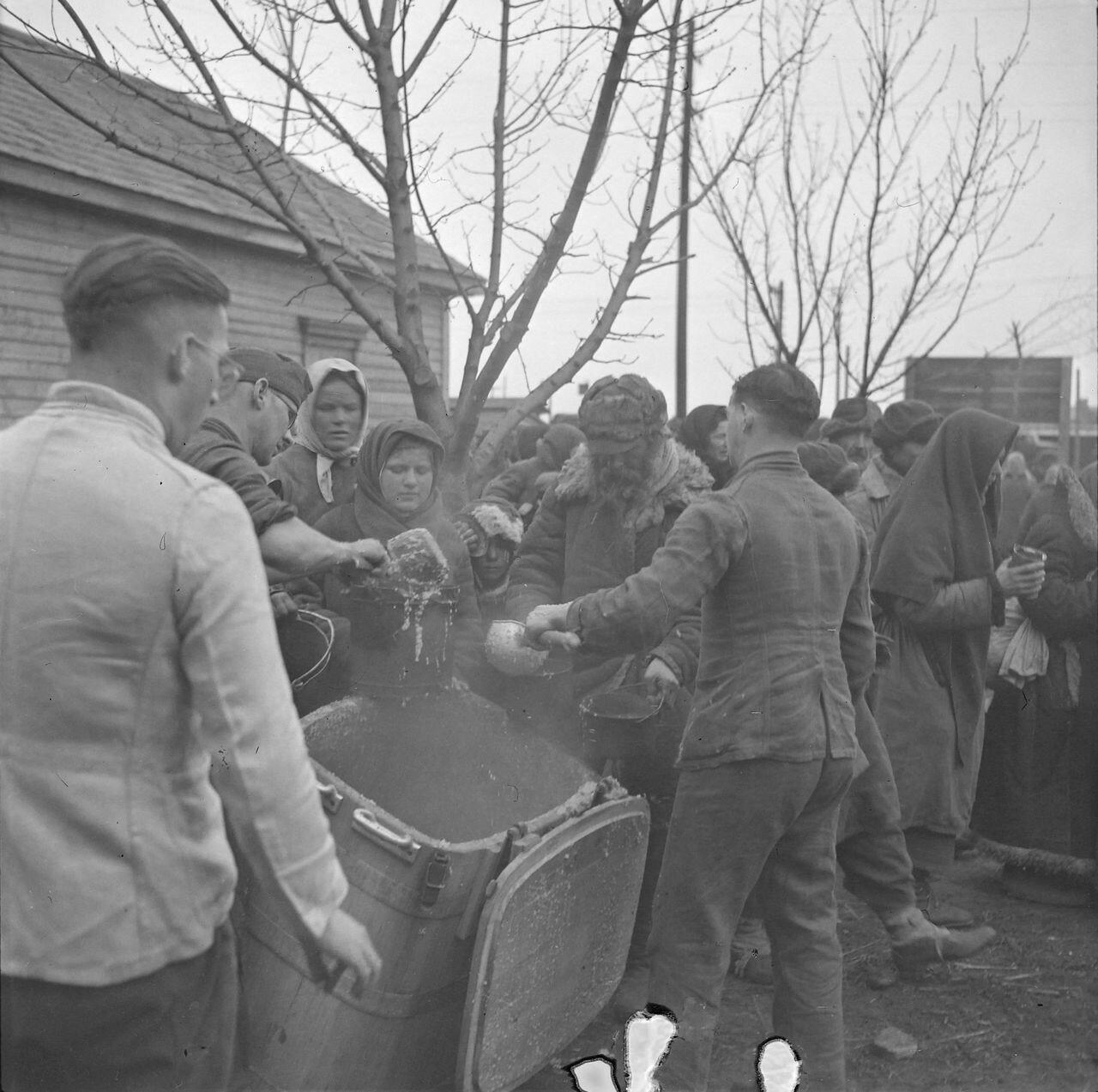 немцы оккупанты фото стоит опорах, несколько