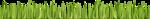 KAagard_BackyardAdventures__Grass.png