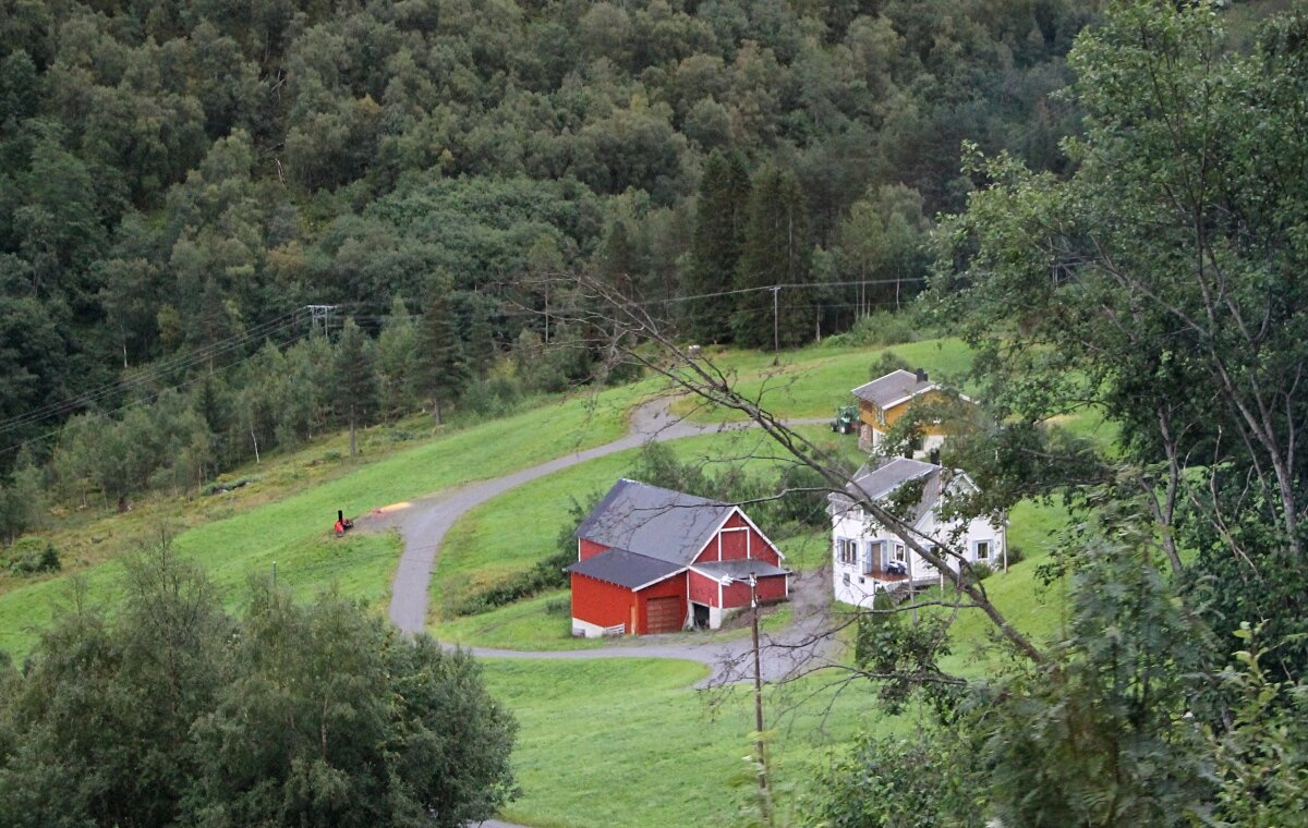 Eidsdalen valley. Livestock farm
