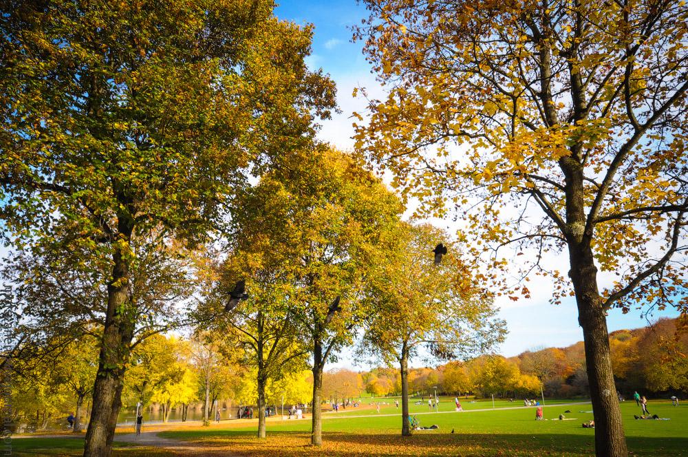 Herbst-Munchen-2013-(59).jpg