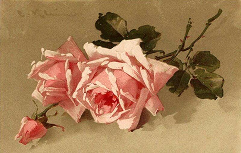 К. Кляйн. 173. Розовые розы.
