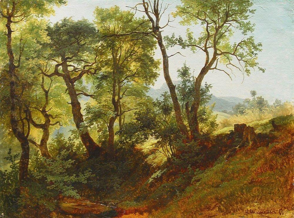 Опушка леса 1866.jpg