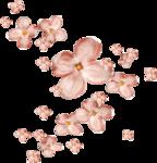 Lilas_La-vie-en-rose_elmt (59-2).png