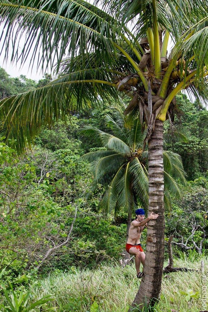 Самые красивые острова Филиппин