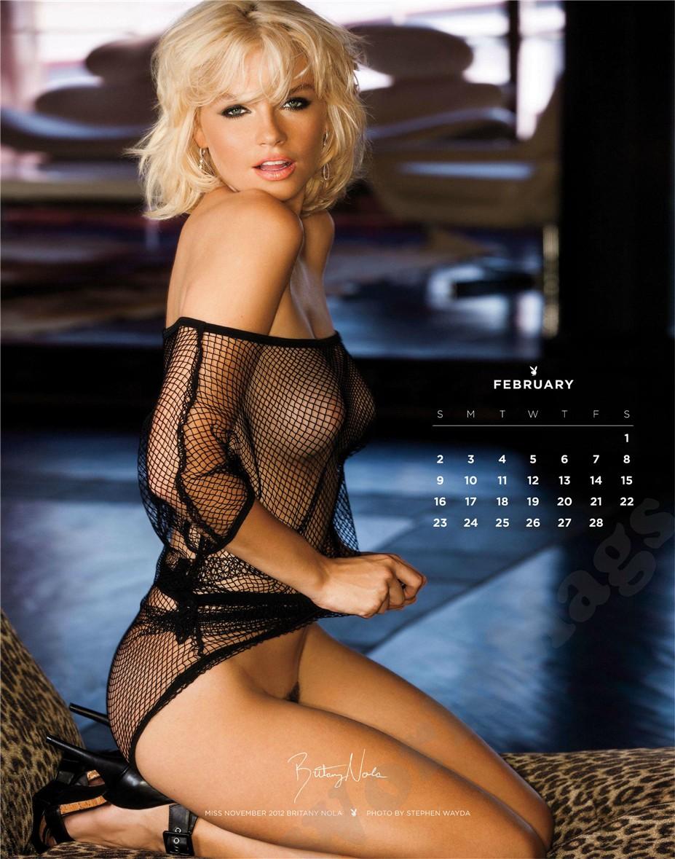 february - Playboy USA playmate calendar 2014 / Britany Nola - Miss November 2012