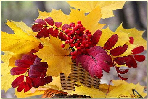 Художница-осень.