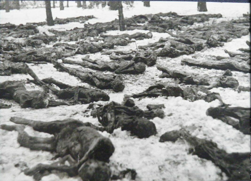 1943. В освобожденном Сырецком концентрационном лагере