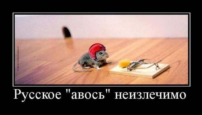 http://img-fotki.yandex.ru/get/4901/c-olia2009.11/0_3e187_d8dcb36f_XL.jpg