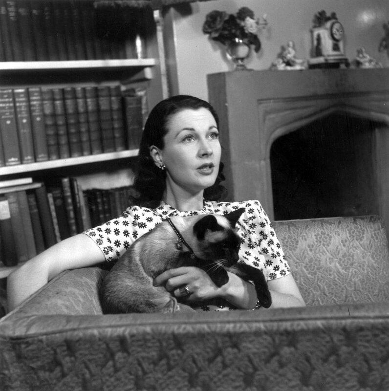 Знаменитости и животные. Vivien Leigh