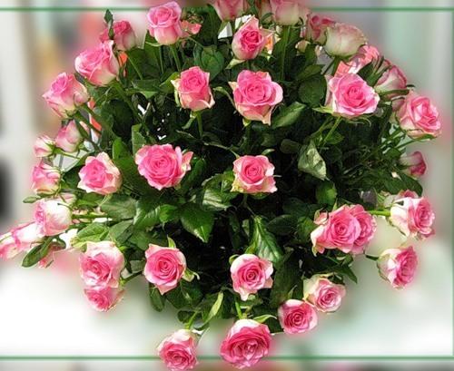 Букет розовых роз с зелеными листьями