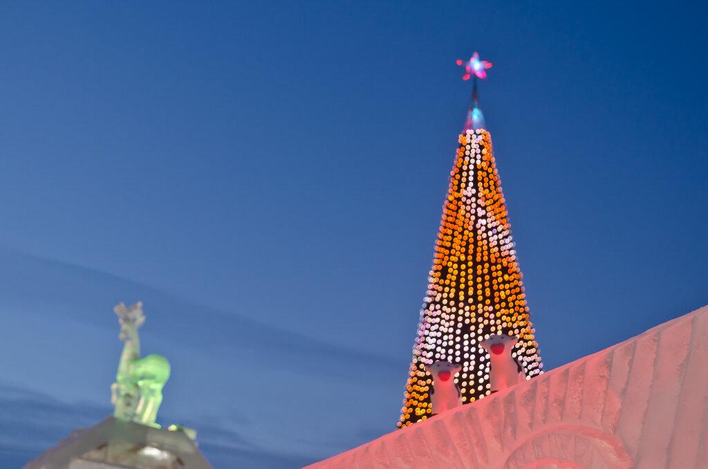 Фото. Ледовый городок в Екатеринбурге. Объект съемки сливается на пестром фоне. Фотоаппарат Никон Д5100. Китовый объектив Никкор 18-55