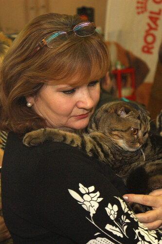 """Международная выставка кошек """"Удивительные кошки"""", 5-6 октября 2013, г. Сургут, ХМАО 0_ddb23_a28dee10_L"""