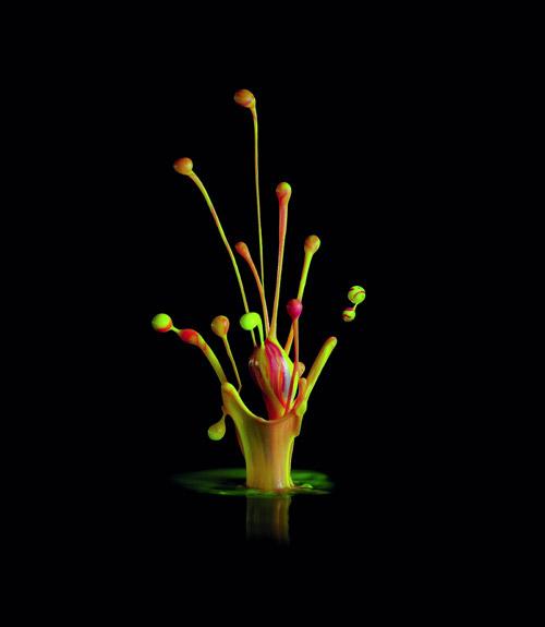 Краски могут танцевать... под музыку! Цветные мгновения от Canon Pixma