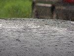 Весёлый летний дождик