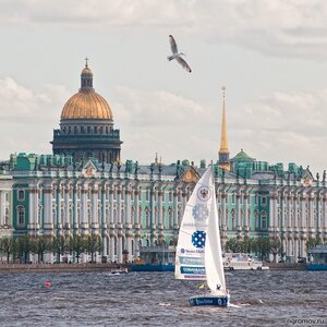 Петербургская регата (Нева, Петербург, птица, судно, храм, чайка, Эрмитаж)