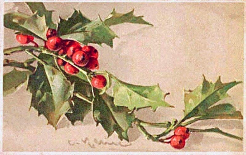 К. Кляйн. 159. Рождественская открытка.  Ветка падуба.